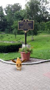 Evee - WW Memorial - Congress Park