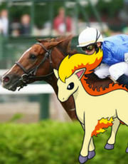 ponyta-at-saratoga-race-course